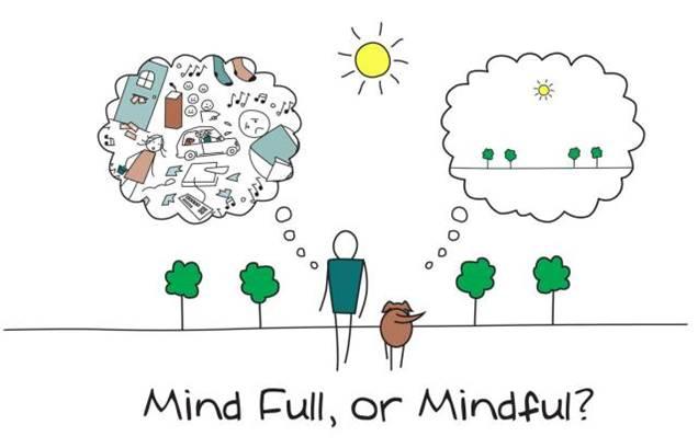 Exemplo de Mindfunless